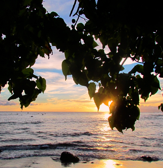 The Shores of Maui Photo Gallery